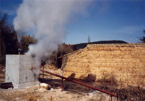 ヤングビーナス薬品工業所蔵明礬の花資料10