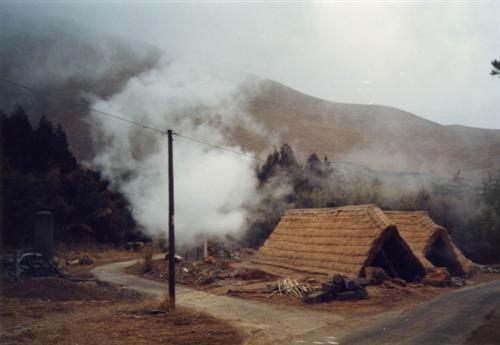 ヤングビーナス薬品工業所蔵明礬の花資料16
